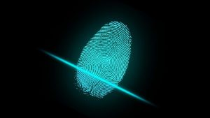 Data Secure: Best Identity Theft Protection: - Post Thumbnail
